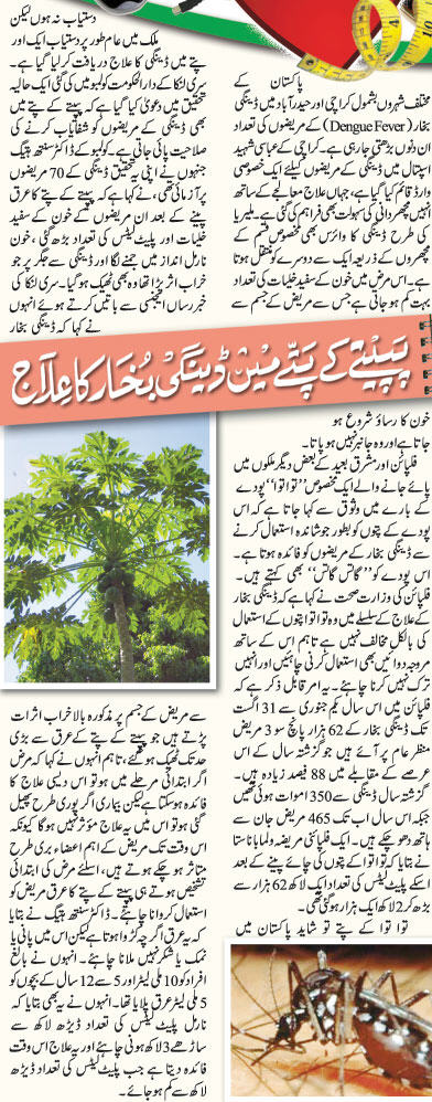 dengue fever essay pakistan