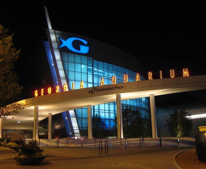 World 39 S Largest Aquarium Georgia Aquarium Atlanta