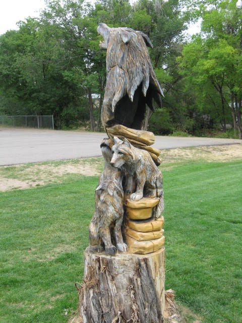Old Cottonwood Trees Art