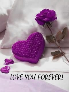 I Love You 4ever Quotes : Post by reesh Jan 05, 2012 Views: 19844