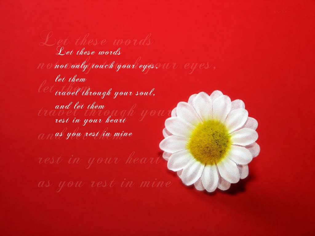 Valentines Day Lovely Quotes Wallpapers