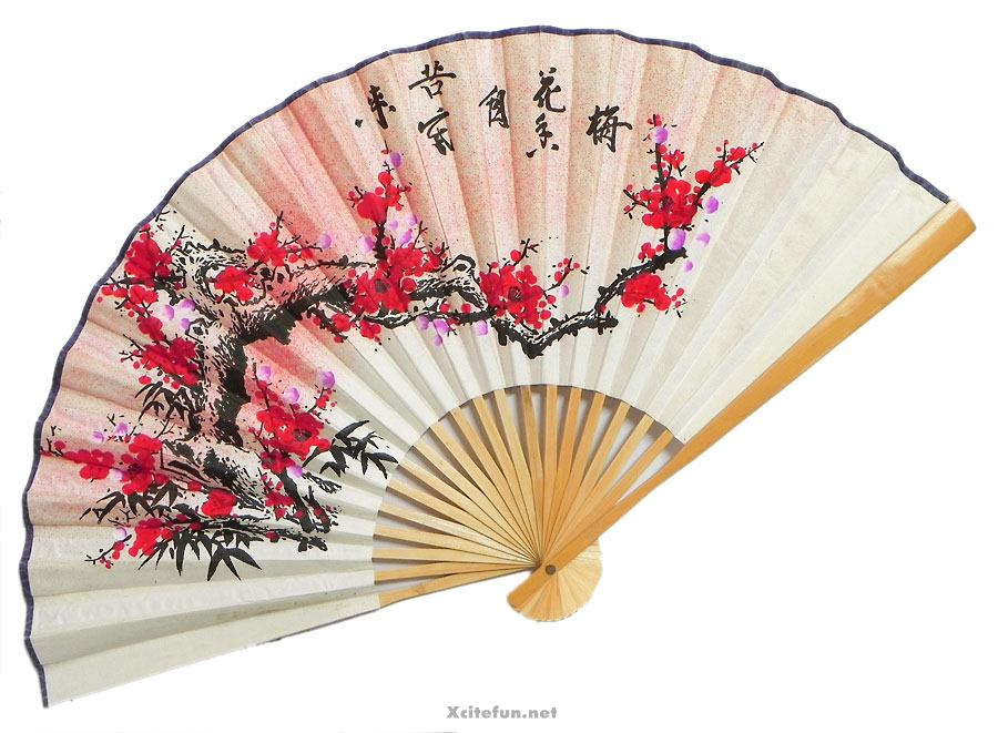 Wall Hanging Japanese Style Flower Fan - XciteFun.net