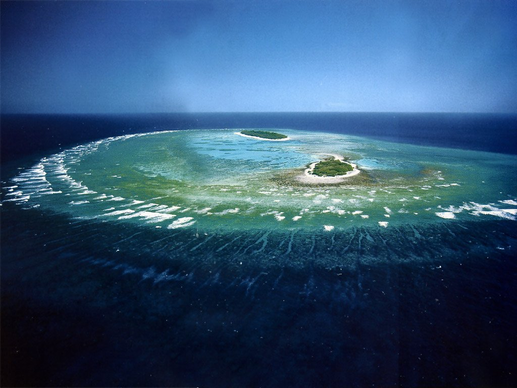 Great barrier reef world 39 s largest coral reef for Great pictures of the world