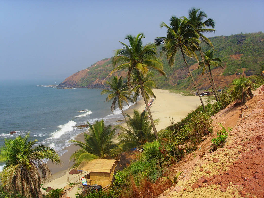 Arambol Beach Goa India Most Beautiful Place Pictures Virtual University Of Pakistan