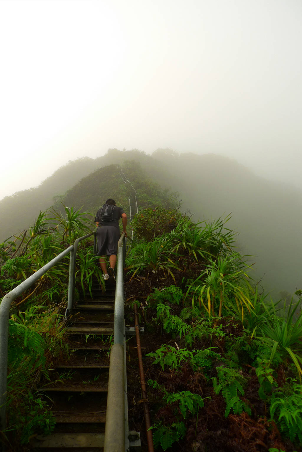 Haiku Stairs - Steep Hiking Trail