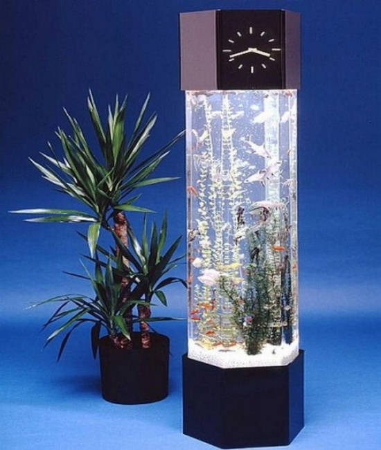 Beautiful Aquarium Designs