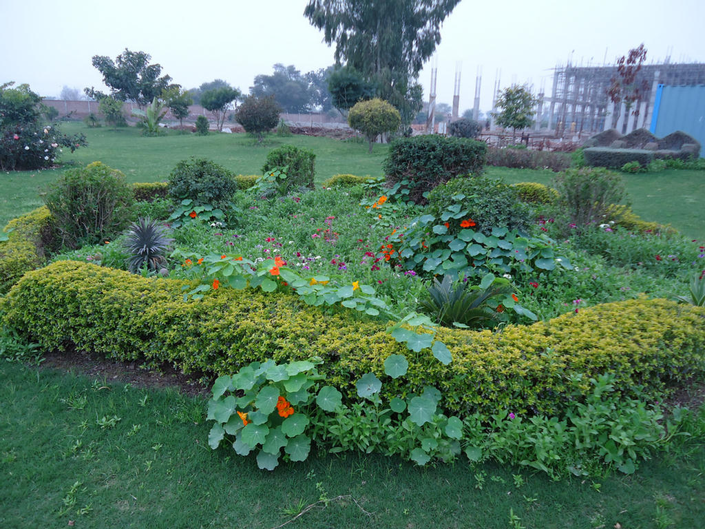 Beautiful Garden In Our Factory