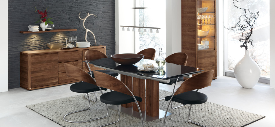 Modern Dining Table Designs and Interior