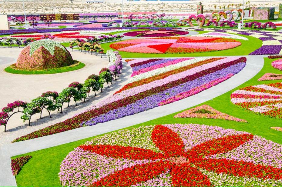 Dubai miracle garden world biggest flower garden for Beautiful garden pictures of the world