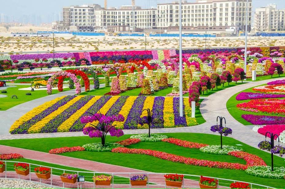 Dubai miracle garden world biggest flower garden for Garden design dubai