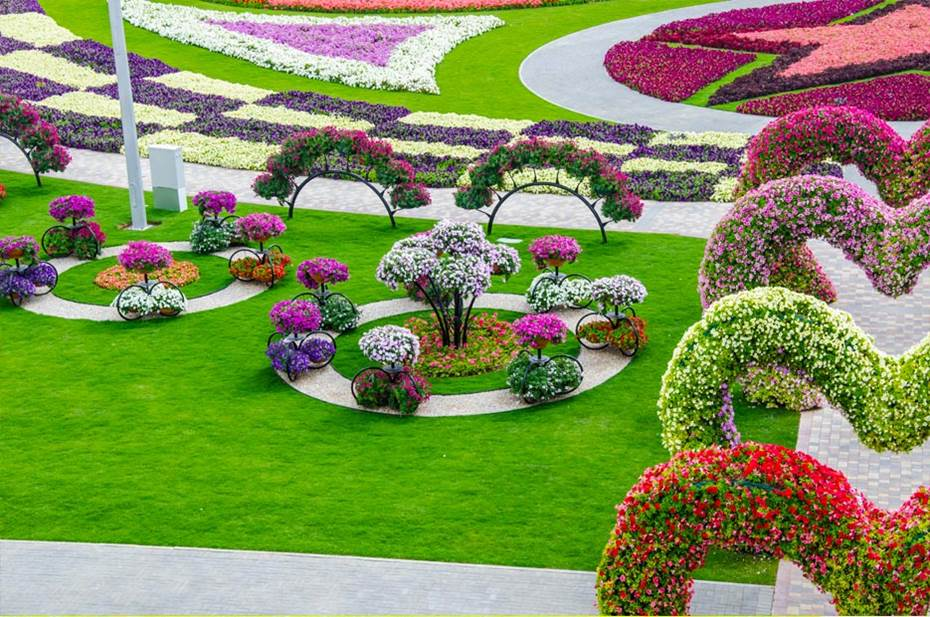 dubai miracle garden world biggest flower garden. Black Bedroom Furniture Sets. Home Design Ideas