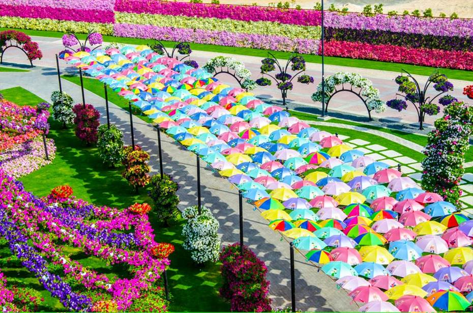 Dubai Miracle Garden World Biggest Flower Garden
