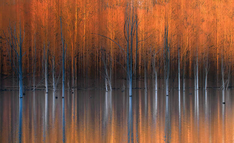 Marvelous Natural Landscape Reflection Xcitefun Net