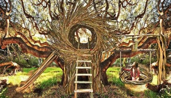 Human Nests Of Big Sur Spirit Garden