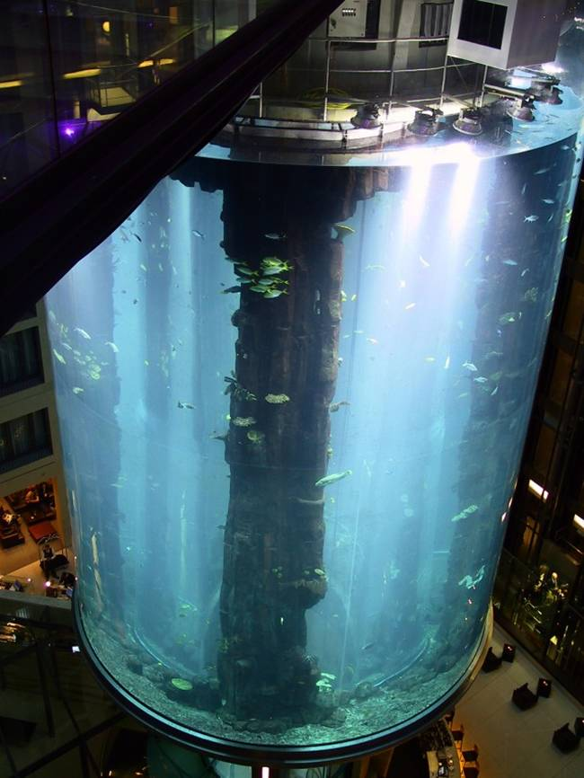 World 39 S Largest Cylindrical Aquarium
