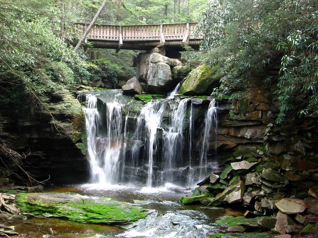 Black Water Falls Cabins - Live Web Cam Naked
