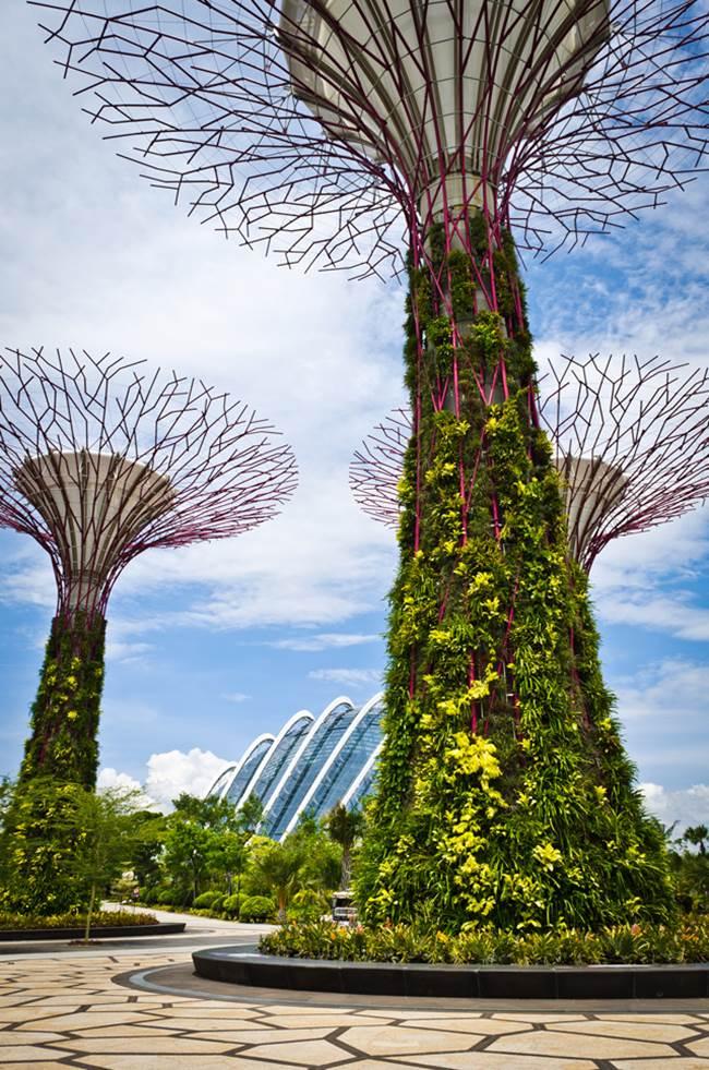 313 singapore