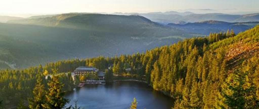 Black Forest Mountain Germany