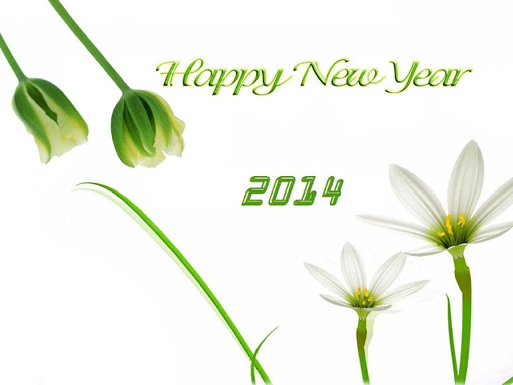 Happy New Year Massages 2014  Greeting SMS Collection