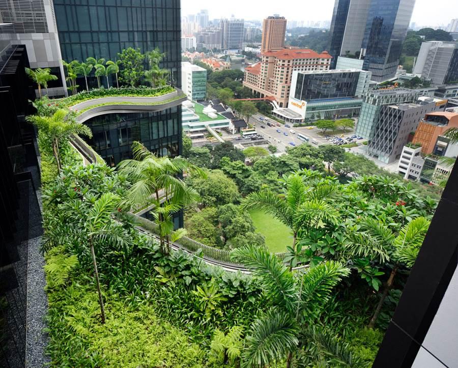 PARKROYAL Sky Gardens Singapore