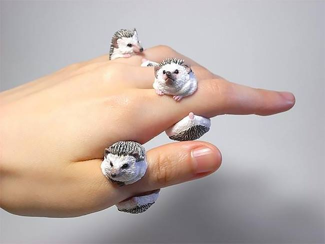 Count Blue - Animal Themed Cling Rings