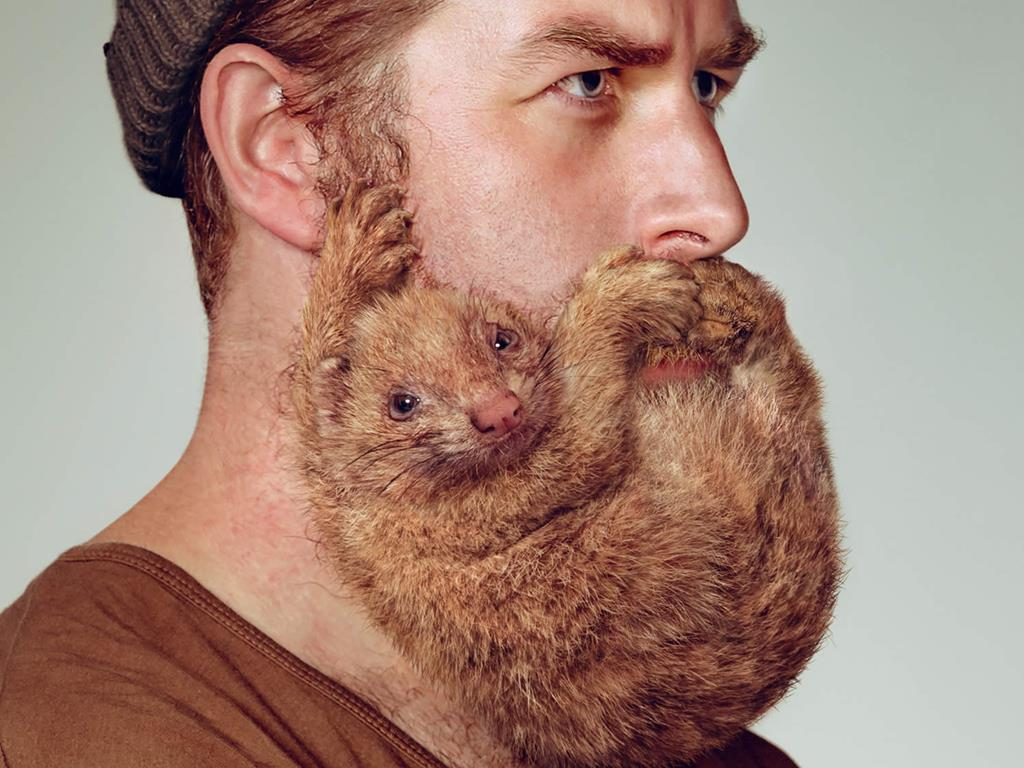 collection beards design photos hairstyle inspiration daily - Beard Design Ideas