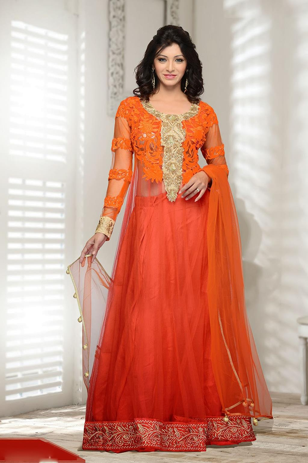 Pakistani dress designs frocks the for Net designs