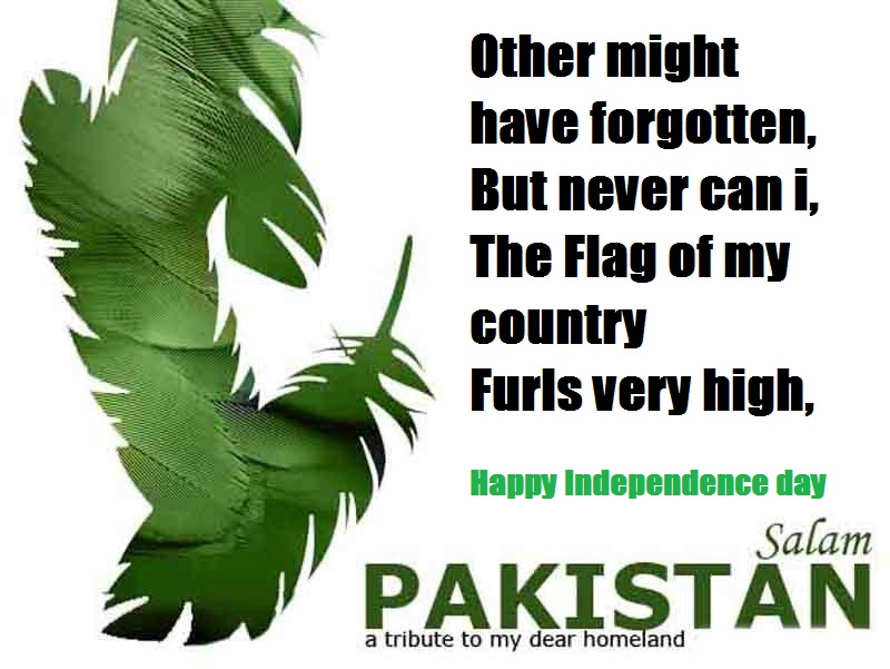 essay on the independence day of pakistan
