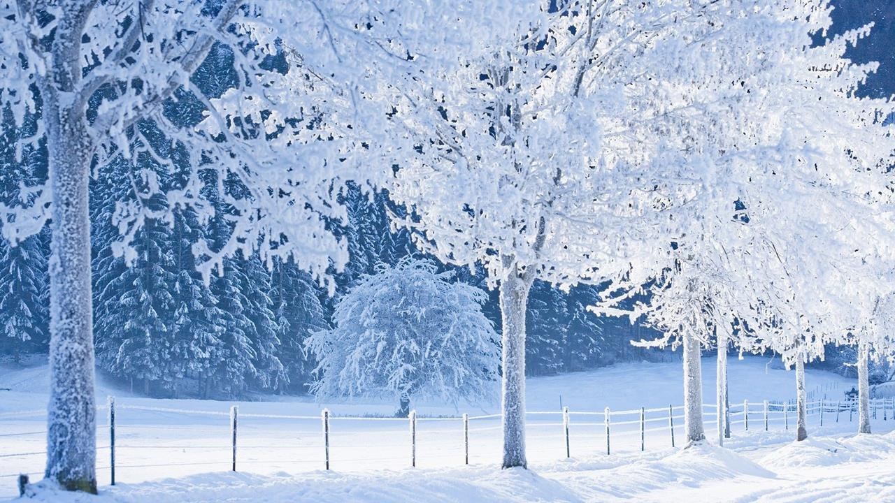 Amazing snowing nature wallpapers Beautiful snowfall pictures