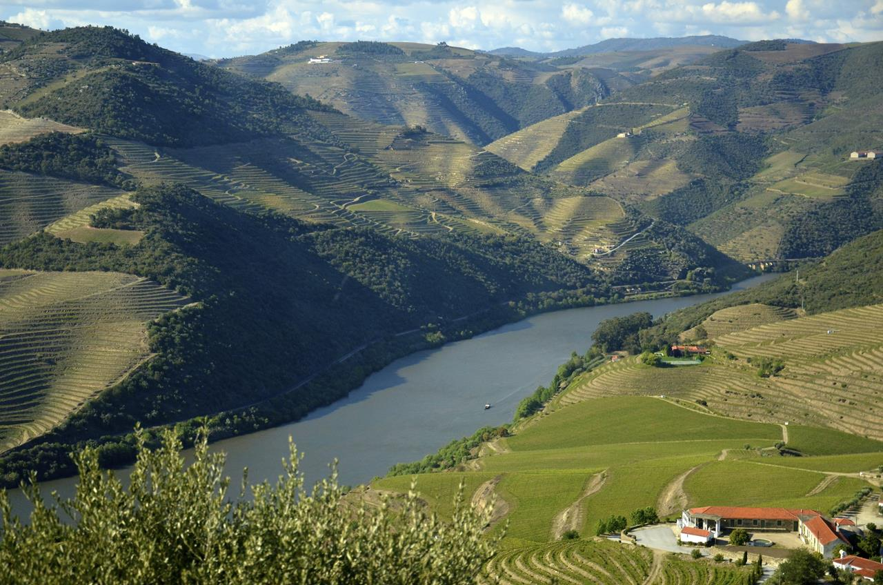 Trip Guide To Douro Valley In Portugal Xcitefun Net
