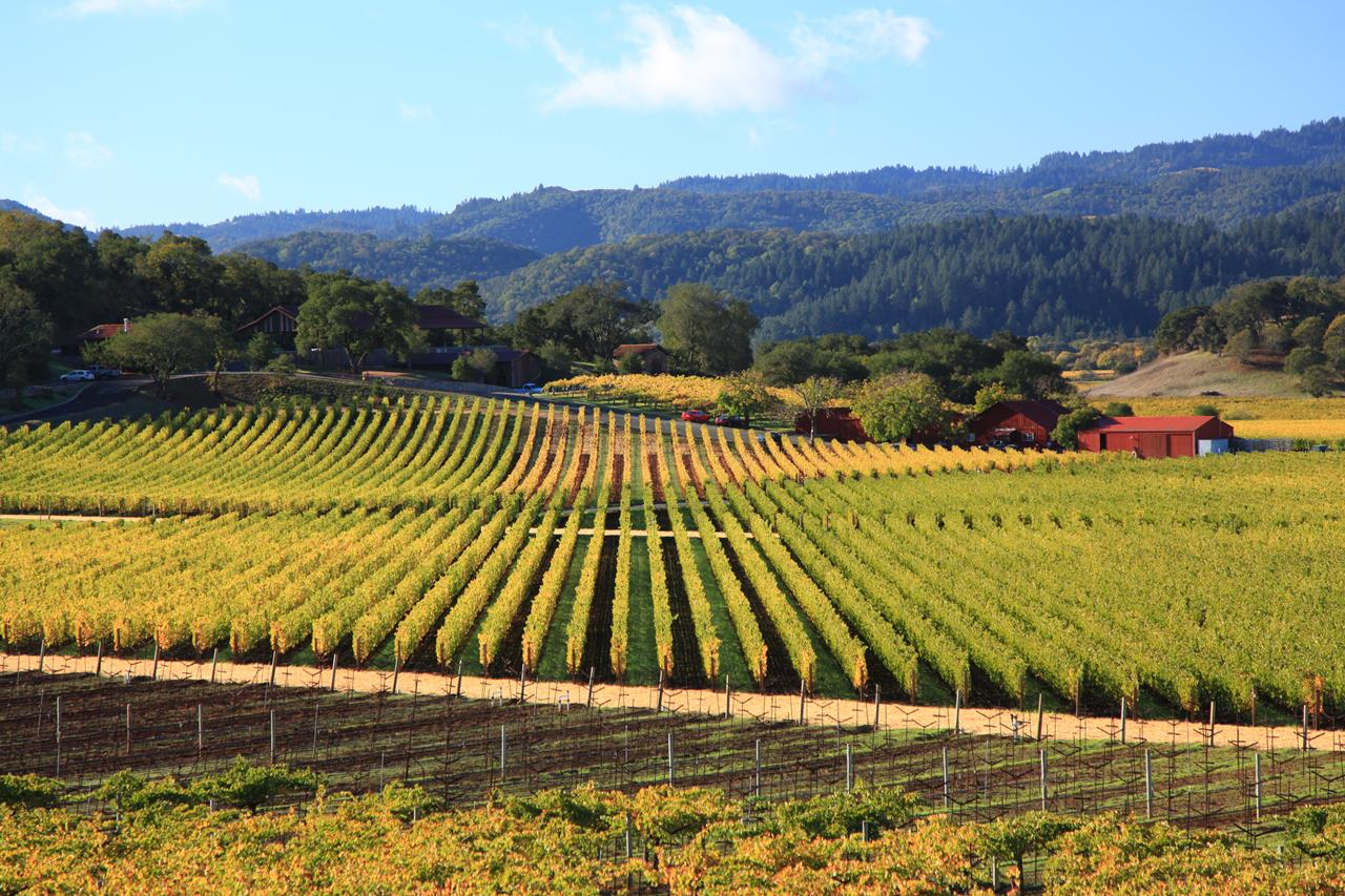 Trip Guide To Napa Valley California Xcitefun Net