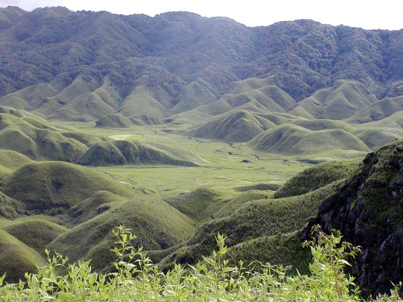 Tour Guide Dzukou Valley India