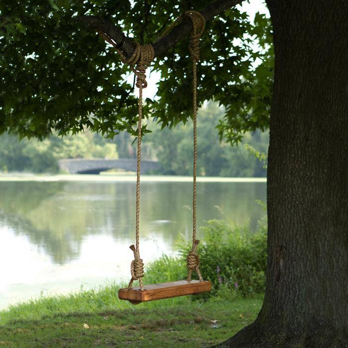 tree a Swinging from