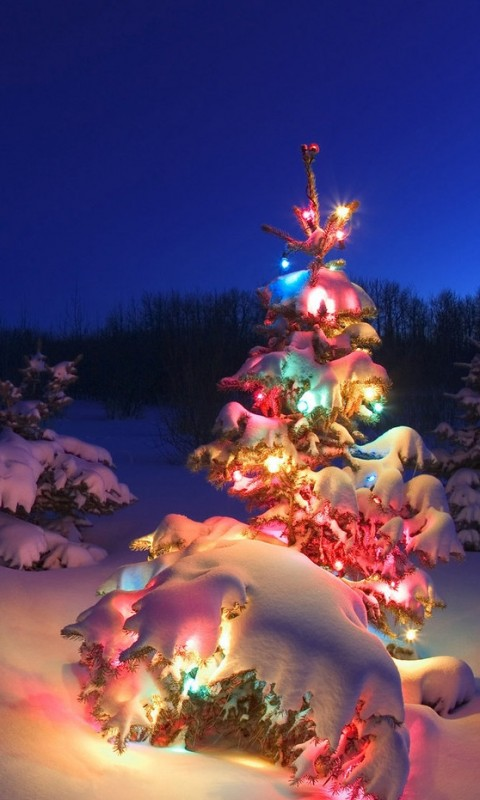 Christmas smartphone wallpaper collection 2014 15 xcitefun image image voltagebd Images