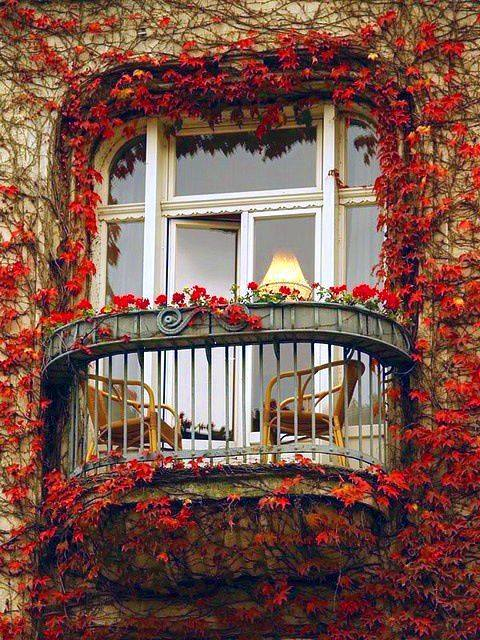 Flowery Decoration of Balconies