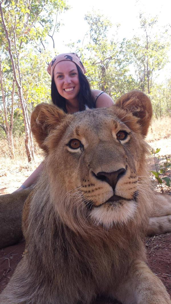Crazy Selfie With Lions Xcitefun Net