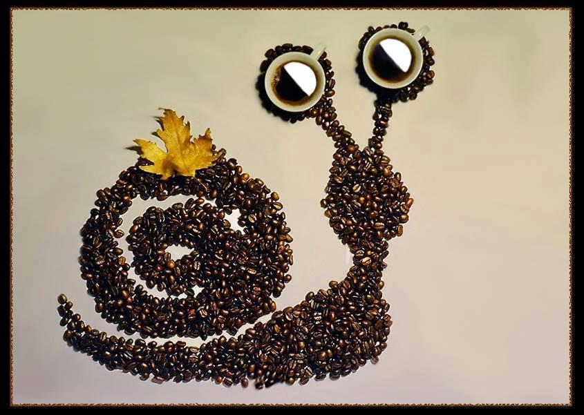 Поделки из кофейные зерна 933