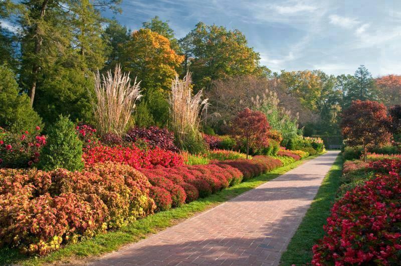 Colorful garden pathways for romantic walk - When you walk through the garden ...