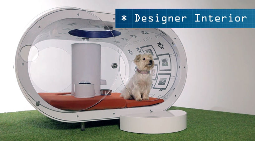 Most Expensive Dream House For Dogs By Samsung