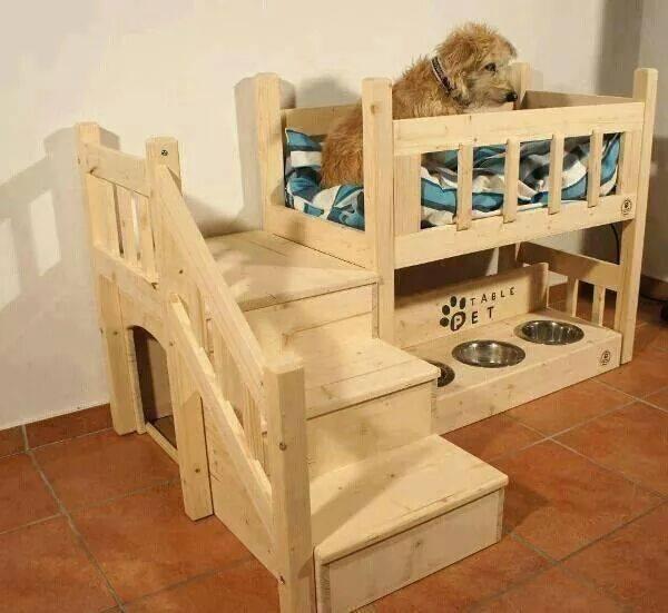 Home Design Ideas For Dogs: Unique Dogs Home Designs