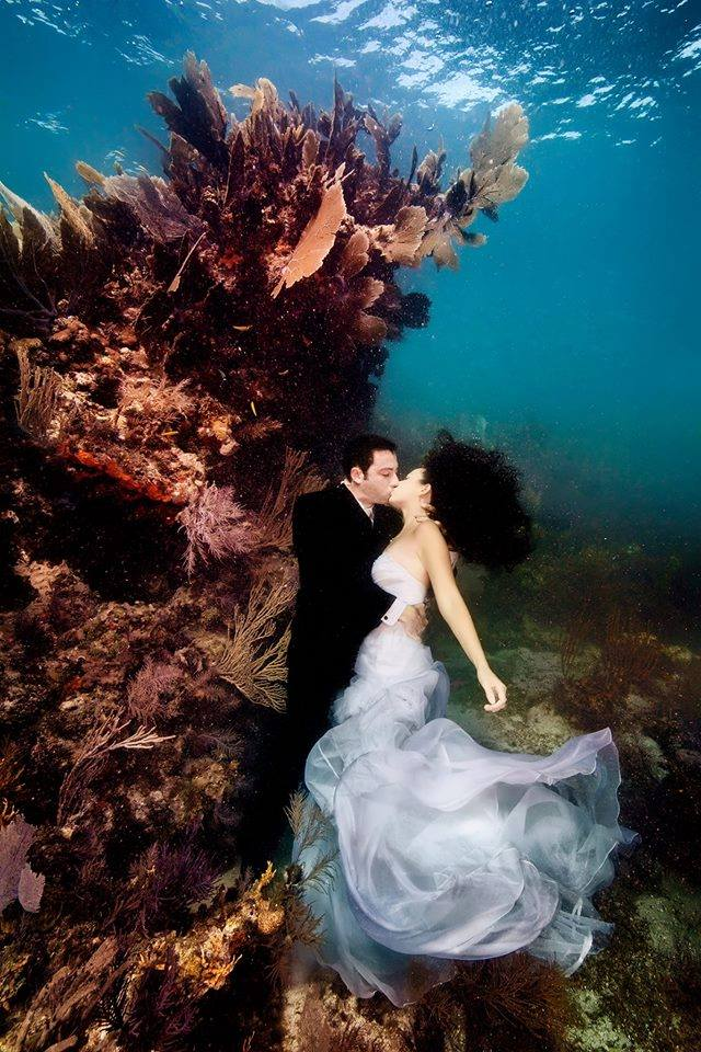 romantic wedding photo session underwater xcitefunnet