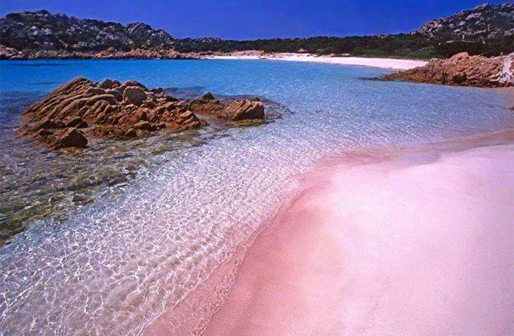 Pantai Pink - Amazing Pink Sand Beach In Indonesia