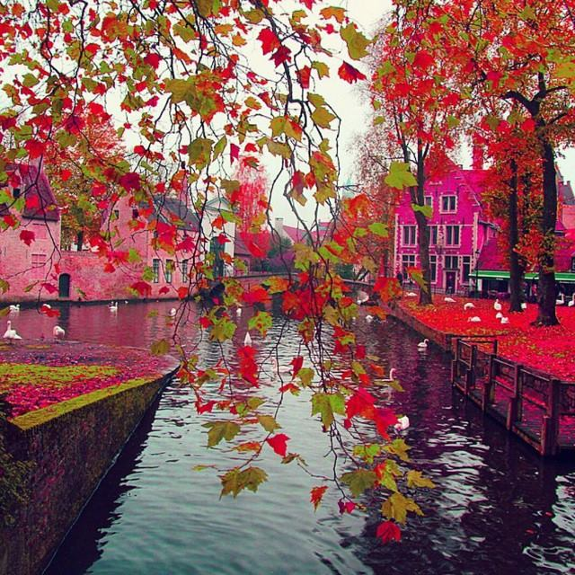 Colorful Brugge Belgium Spring Visit Xcitefun Net