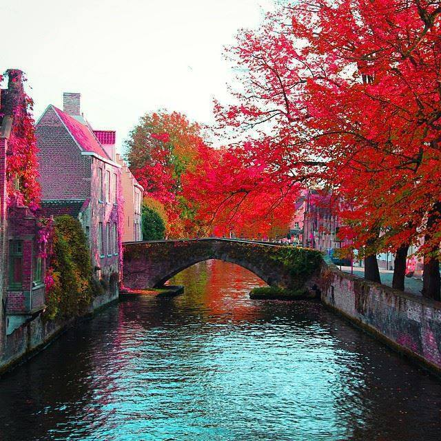 Colorful Brugge, Belgium