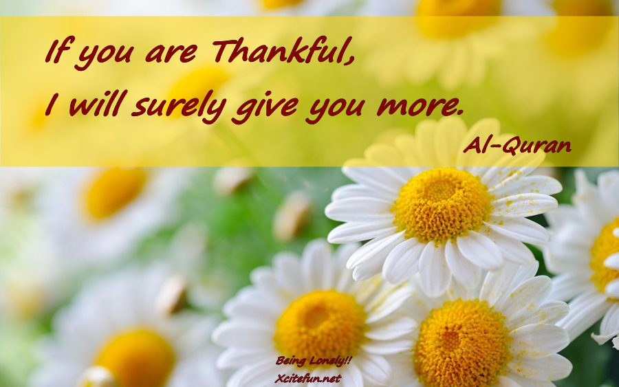 If you are Thankful