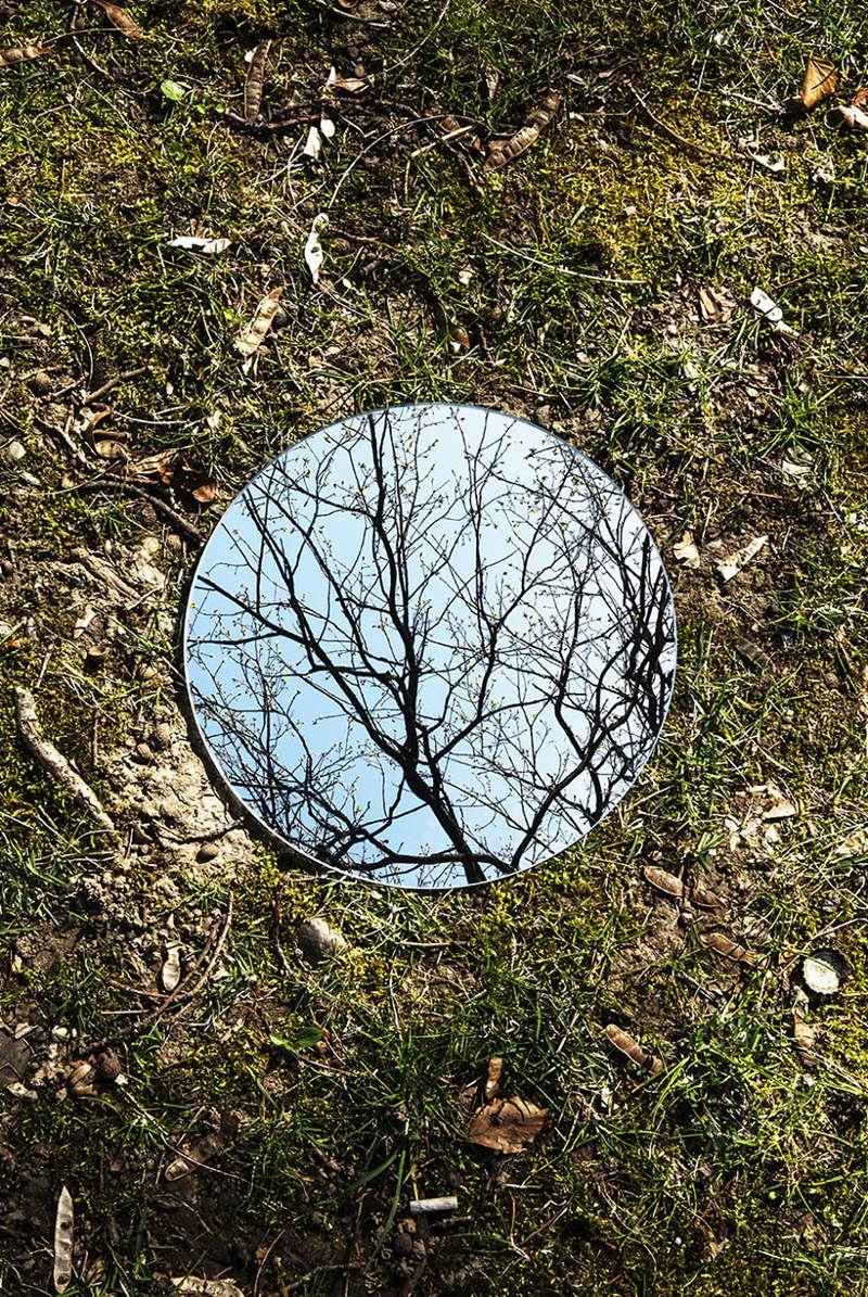 Nature reflections in mirror for Reflection miroir