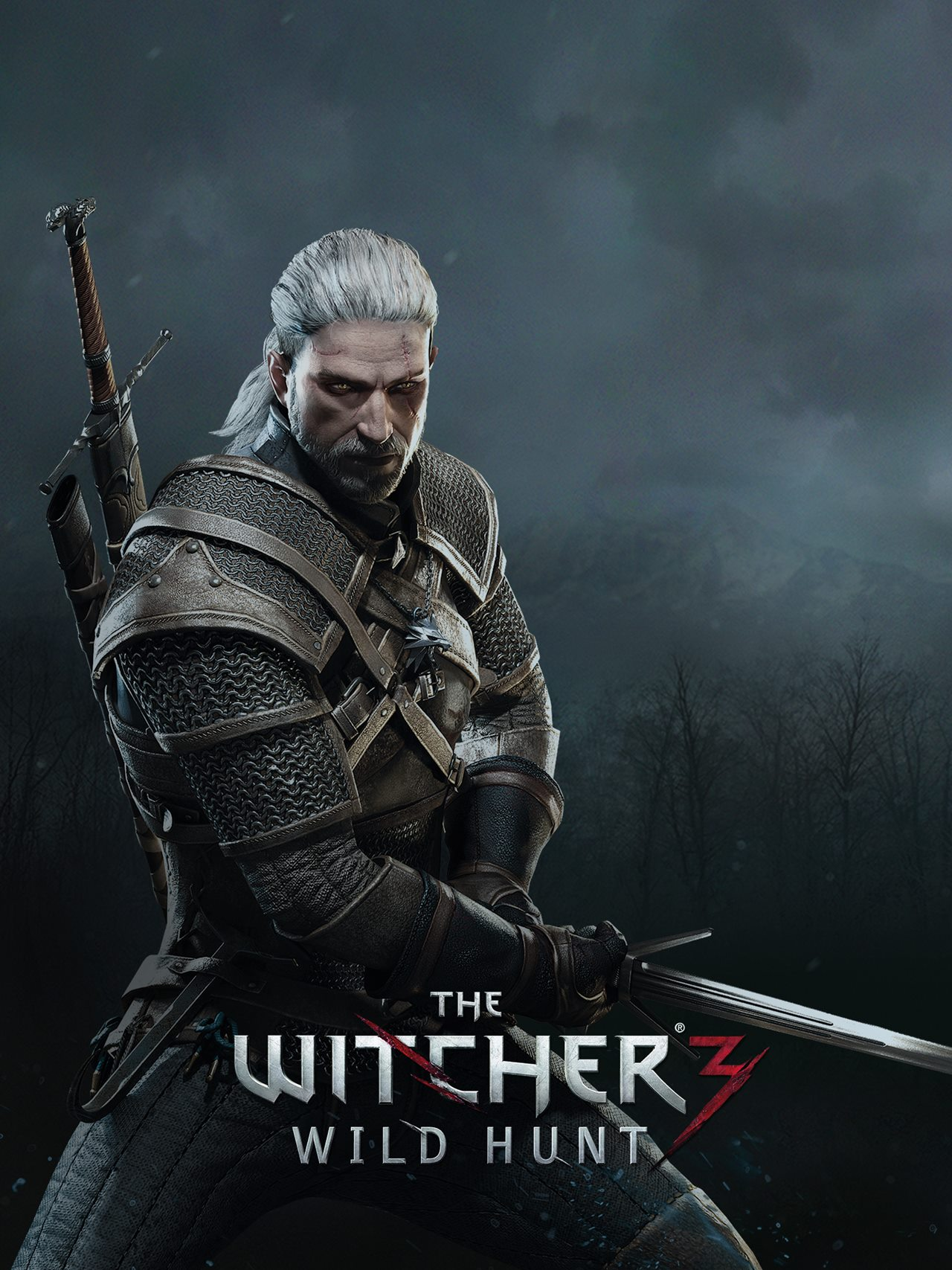 The Witcher 3 Wild Hunt Gaming Wallpapers And Trailer ...