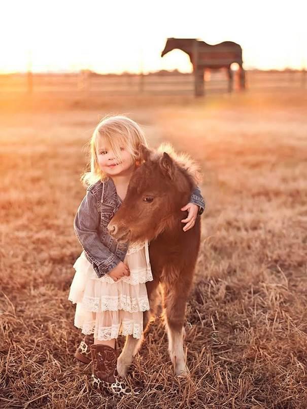 Super Cute Miniature Baby Horse Xcitefun Net