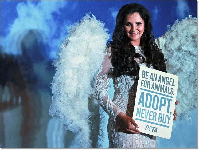 Sania Mirza supports PETA campaign for homeless animals