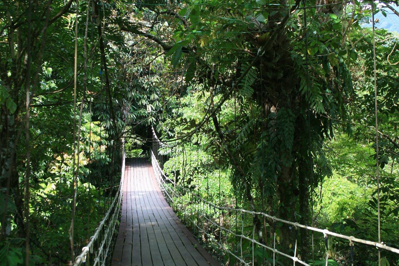 Tourist Guide To Gunung Mulu National Park Malaysia